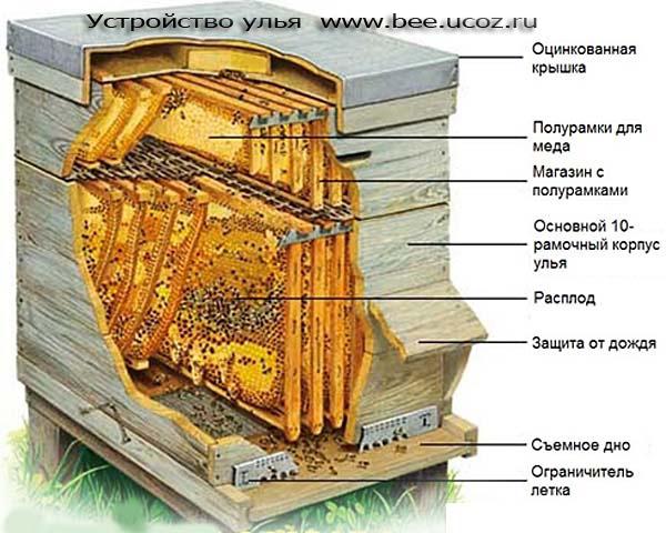 Подвеска молот тора из золота купить